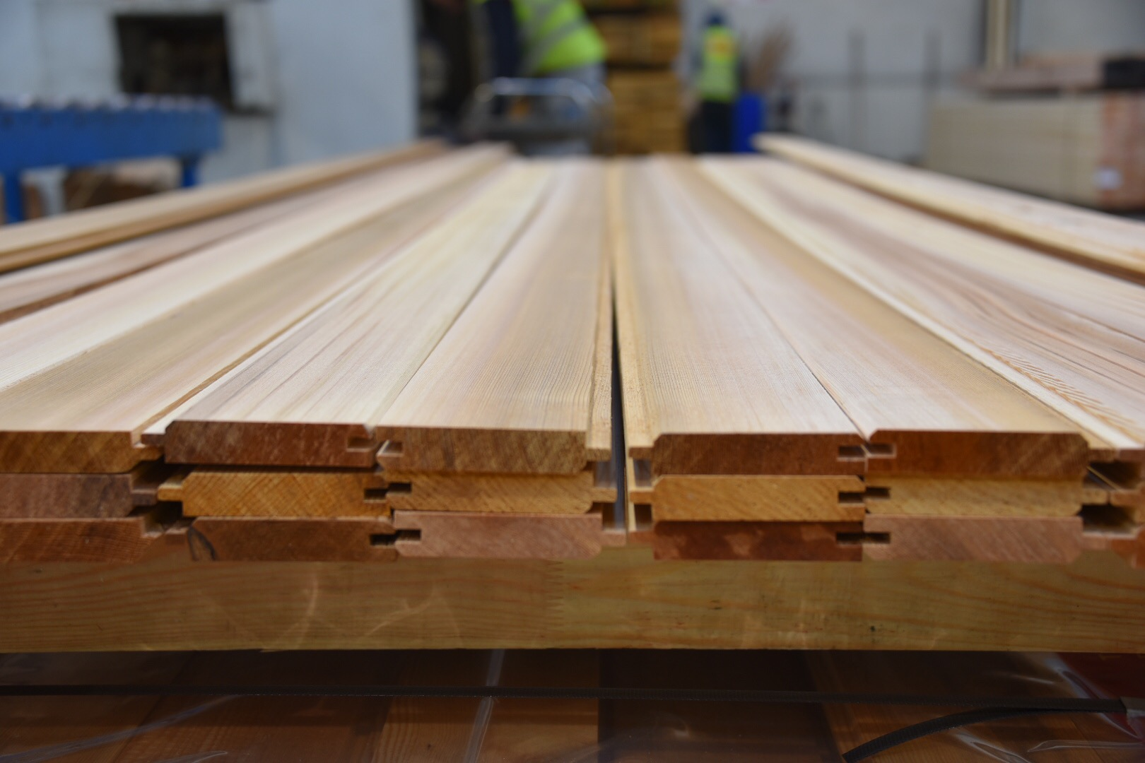 timber being cut